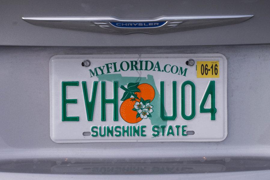 Everglades cosa vedere
